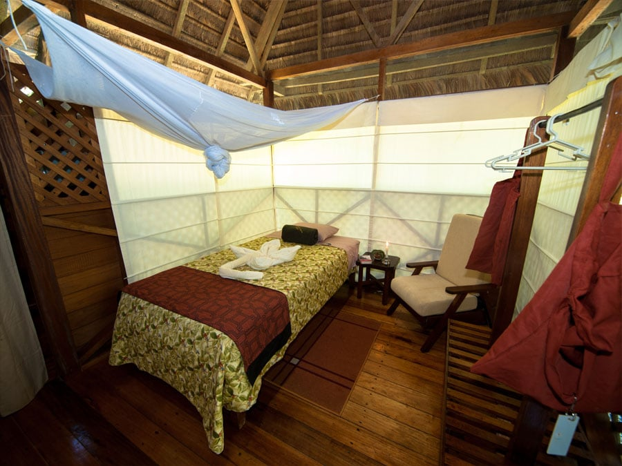 Manu Wildlife Center Room
