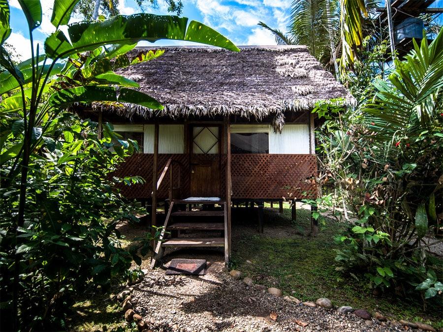 Manu Wildlife Center Lodge