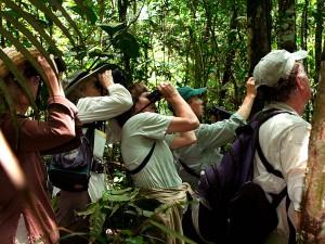 Tucano Amazon Cruise