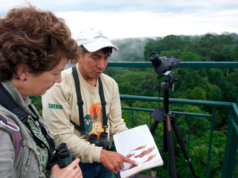 Tourism in the Amazon Rainforest: Thoughts