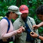 Refugio Amazonas Lodge Trail