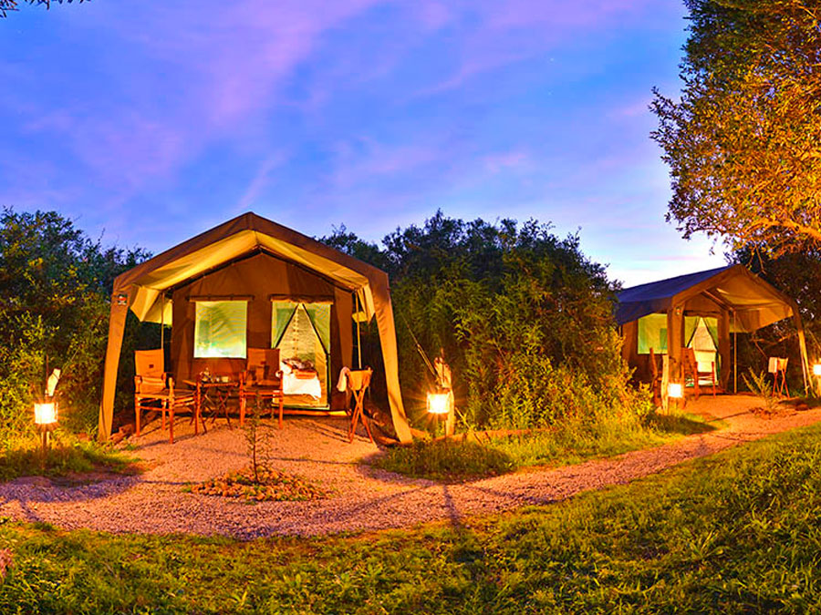 Shamwari Explorer Camp