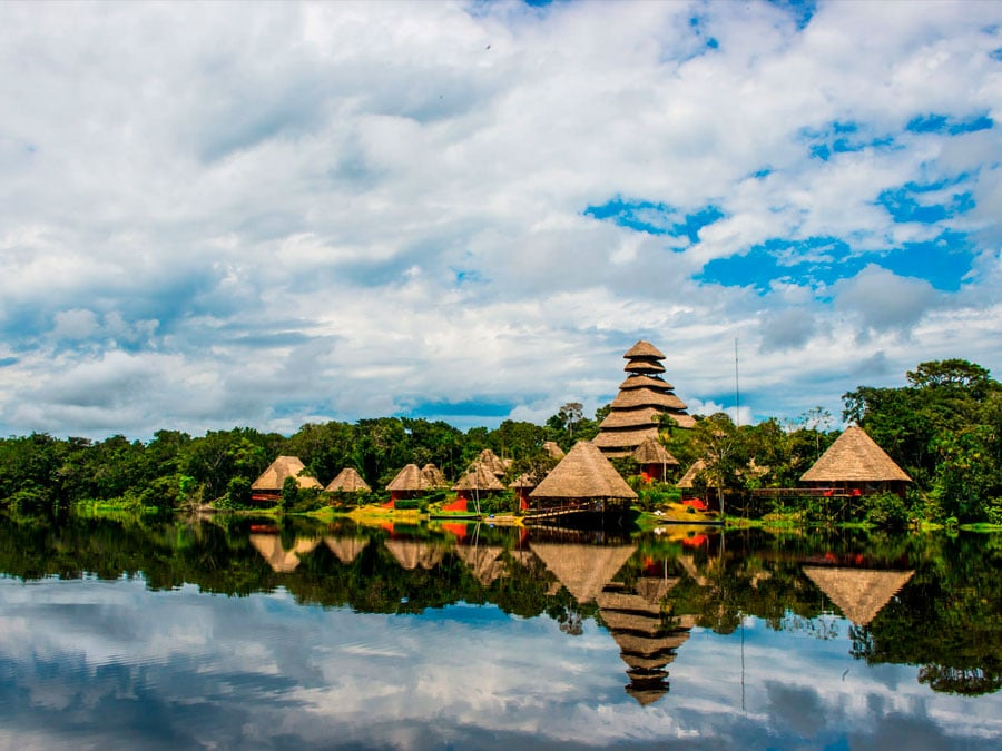 Top Attractions in the Amazon Rainforest