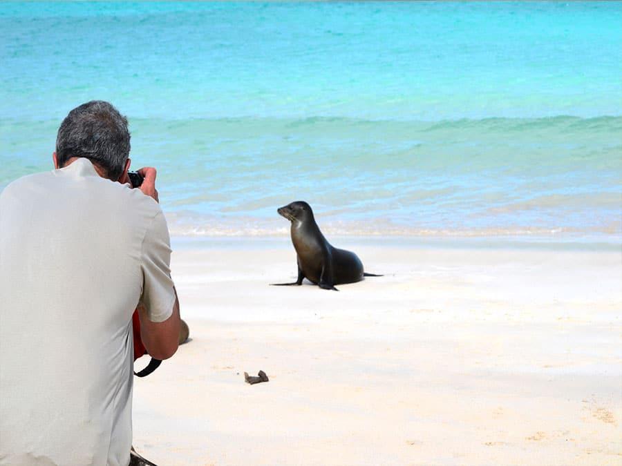 Cormorant Galapagos Cruise Tour