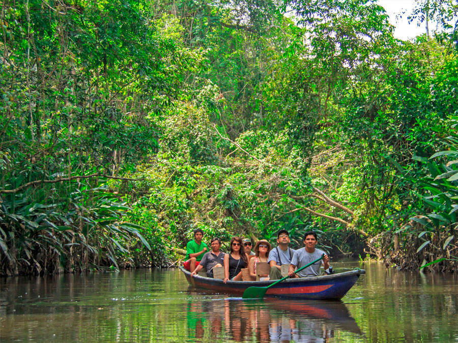 Top 5 Amazon Rainforest tours from Coca