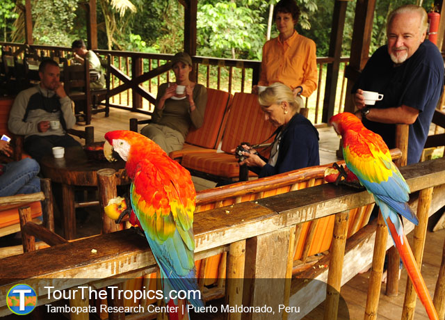 The Top 10 Jungle Lodges in Peru