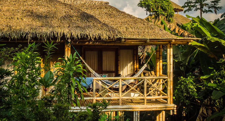 La Selva Lodge - Visiting the Amazon from Quito