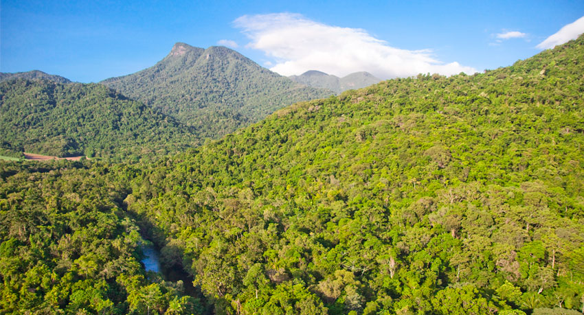 The Wet Tropics, Queensland, Australia