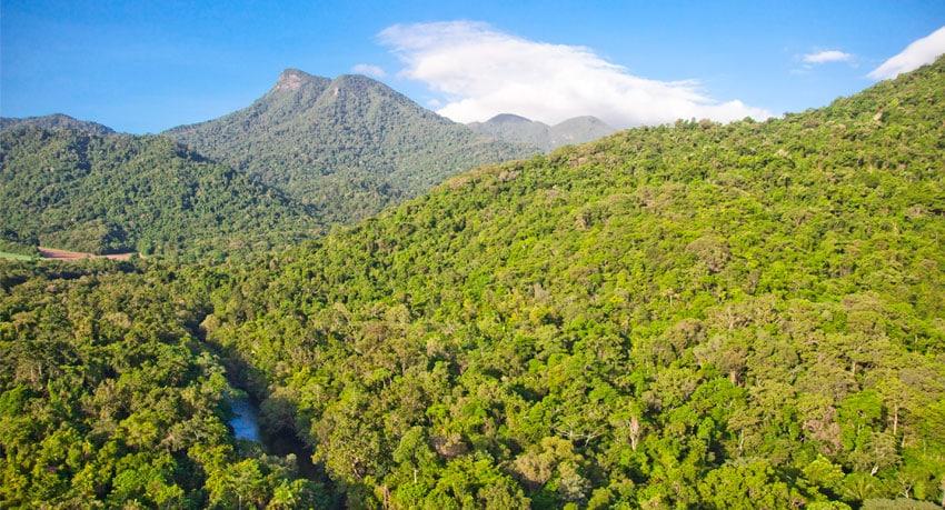 The Wet Tropics, Queensland, Australia