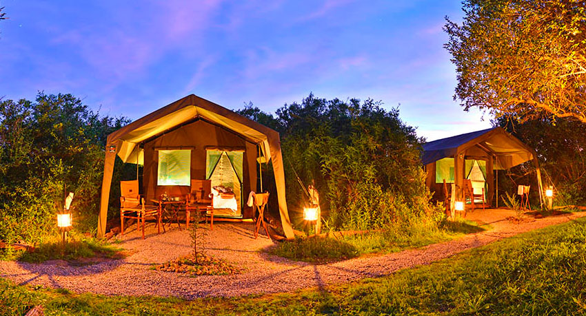 The Shamwari or Sanbona Explorer Camp