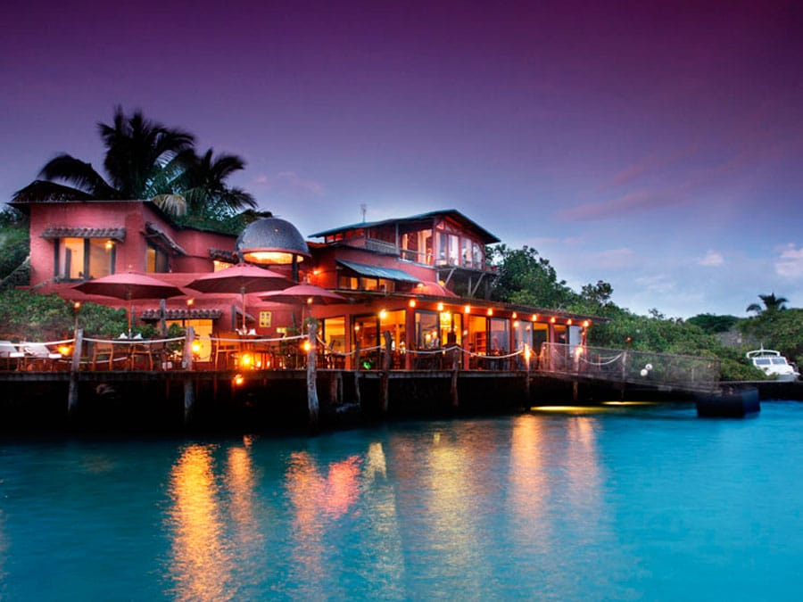 The Red Mangrove Hotel