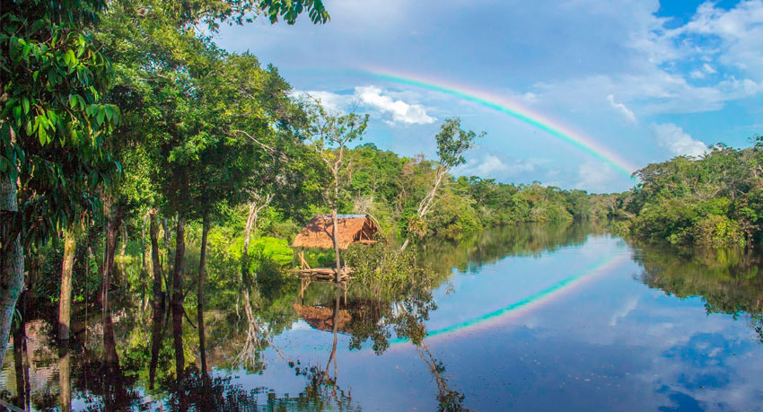 The Top 5 Iquitos Amazon Lodges