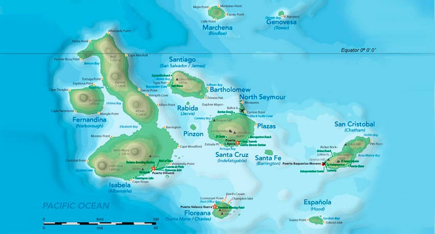 The Top 100 Things to do on the Galapagos Islands: An Island by Island guide to the Galapagos