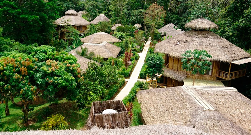 The Top Amazon Tours from Quito