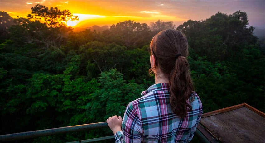Which is the best country to visit the Amazon Rainforest?