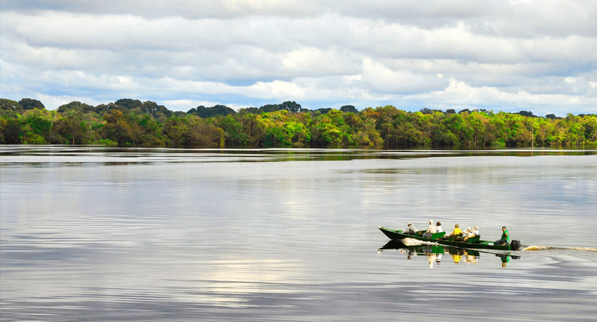The Top Amazon River Cruise in Brazil