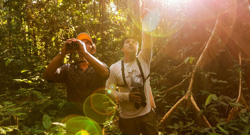 When to visit the Amazon Rainforest