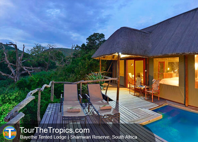 The Bayethe Tented Camp - Luxury Safari Lodge from Port Elizabeth