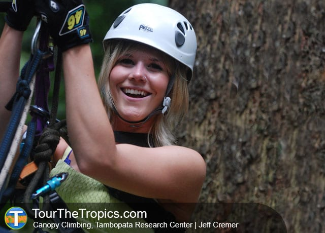 Canopy Climbing at <a href=