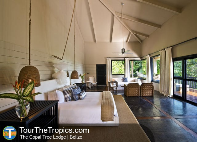 The Copal Tree Lodge
