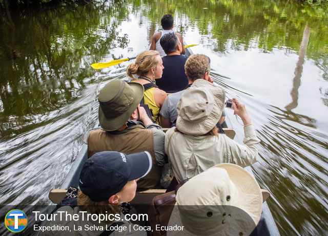 Expedition from La Selva Lodge - Amazon from Quito, Ecuador's Amazon