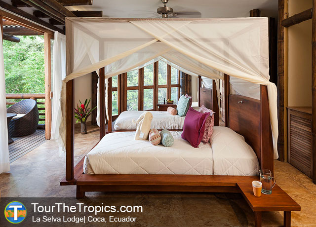 La Selva Suite, Ecuador - Luxury Tours in Ecuador