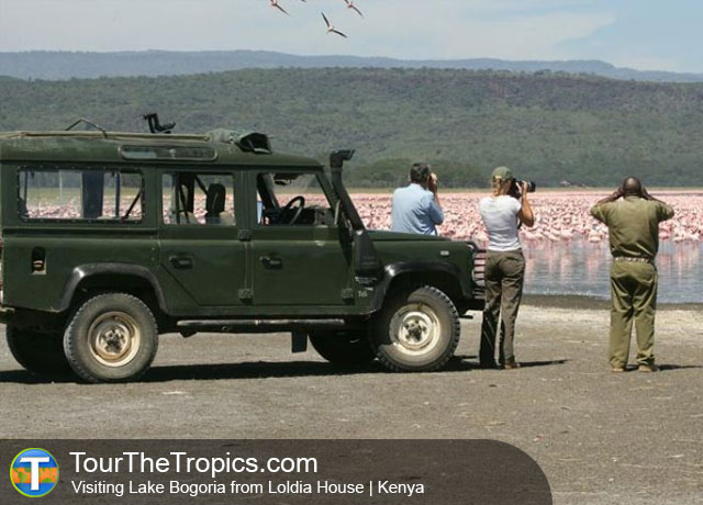 Lake Bogoria - Top Tourist Attractions in Kenya