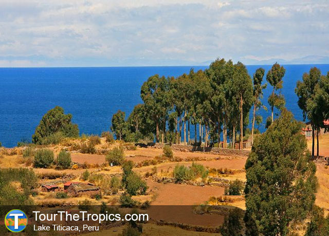 Lake Titicaca - Top Attractions in Peru