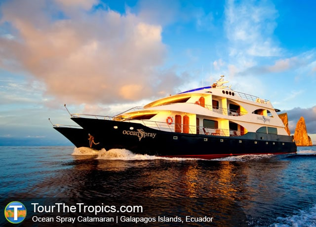 Ocean Spray - Luxury Cruise Galapagos Islands