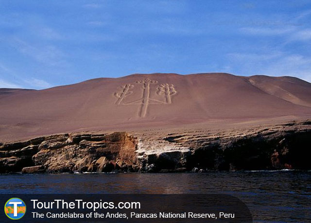 Paracas National Reserve - Top Attractions in Peru
