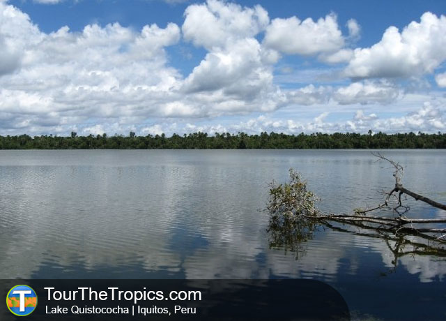 Quistococha - Top Things to do in Iquitos