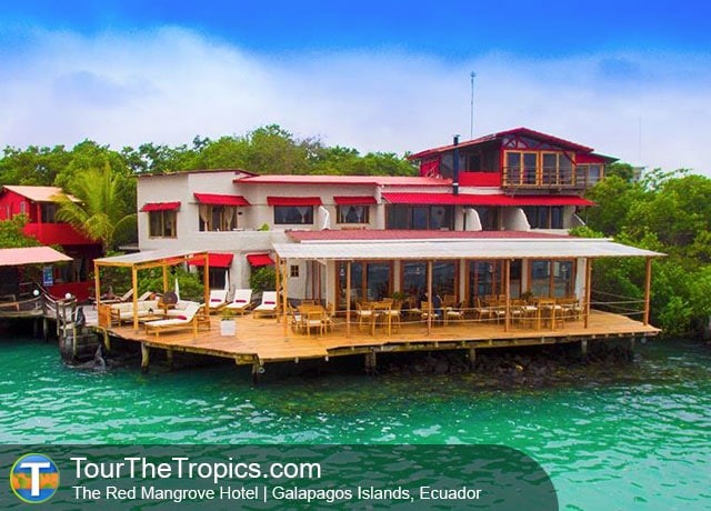 The Red Mangrove Hotel, Galapagos Islands - When To Visit Ecuador