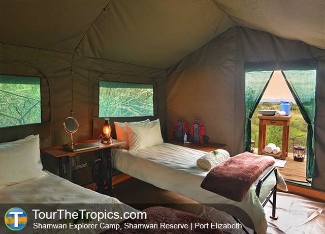 Shamwari Explorer Camp - Top 5 savanna Tours in South Africa