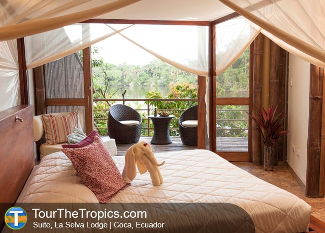 La Selva Lodge - Amazon Rainforest Travel, Ecuador