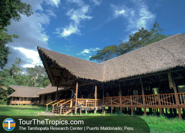 Tambopata Research Center, Puerto Maldonado, Peru
