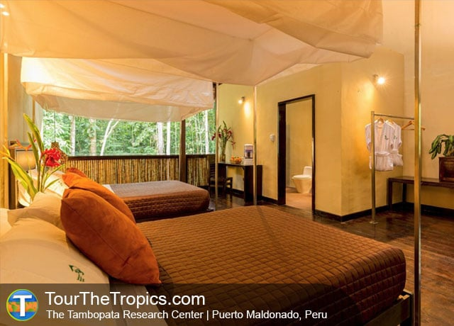 Tambopata Research Center - Jungle Lodges Peru