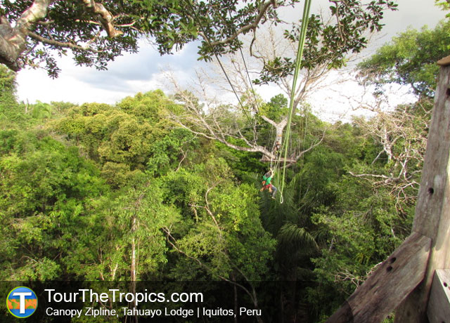 Tahuayo Lodge Zipline - Top Things to do in Iquitos