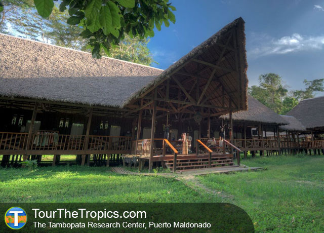 Tambopata Research Center - Amazon Rainforest Travel