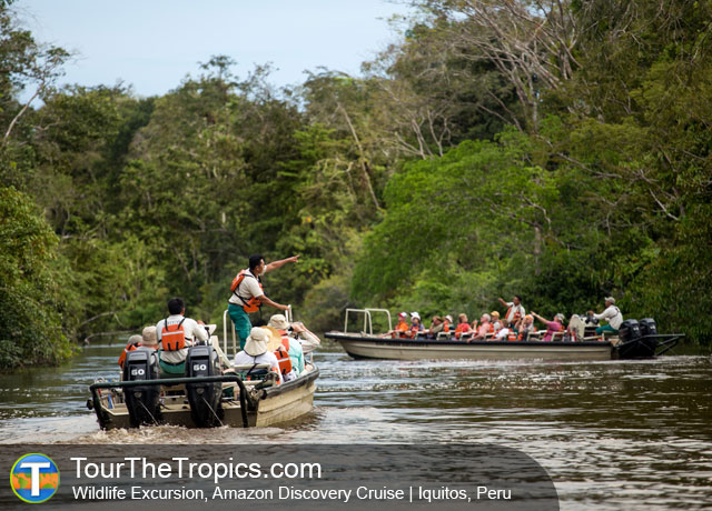 Amazon Discovery Cruise - Best Itinerary for Peru