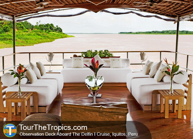Delfin I - Amazon Rainforest Tour Prices